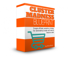 Cluster Madness Blueprint Review for Low-Content Books