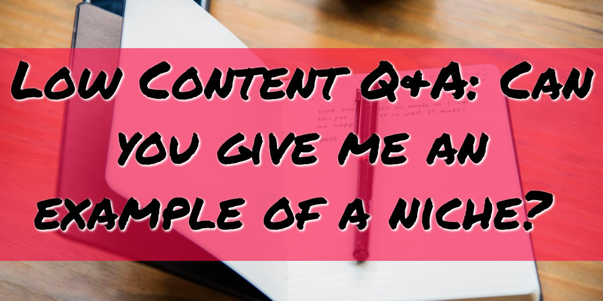 Can you give me an example of a niche? Low Content Q&A